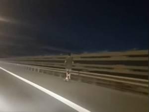 Il roule à 70 km/h en trottinette électrique sur le ring de Bruxelles