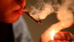 Groenarbeider rookt tot 15 (!) joints per dag, ook op werk: 12 maanden cel