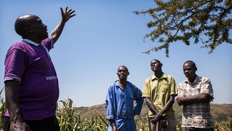 Muiis-medewerker Wilson Bamwesiqye geeft informatie aan twee boeren. Beeld Sven Torfinn