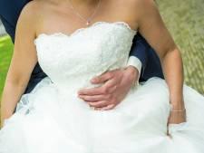 Koepeltje bij trouwlocatie het Rosarium weer hekkenvrij