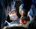 Chirurg dr.M. (Miranda) Kusters tijdens de operatie  foto Koen Verheijden.
