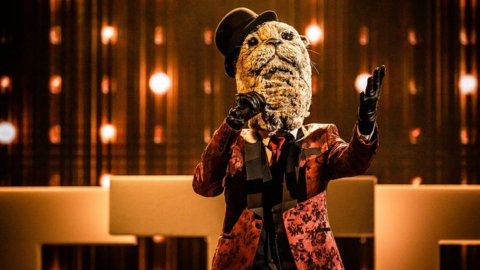 Otter in 'The Masked Singer'