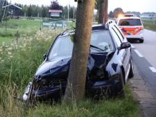 Automobilist onder invloed rijdt tegen boom in Lienden