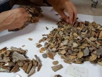 Skelet van 41.000 jaar oud van neanderthalerkind werpt nieuw licht op mysterie van begravingen