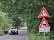 Harderwijkse das nog onzeker over veilige oversteek