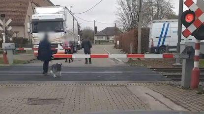 VIDEO. Levensgevaarlijk: vrouw met hond steekt spoor over in Ninove