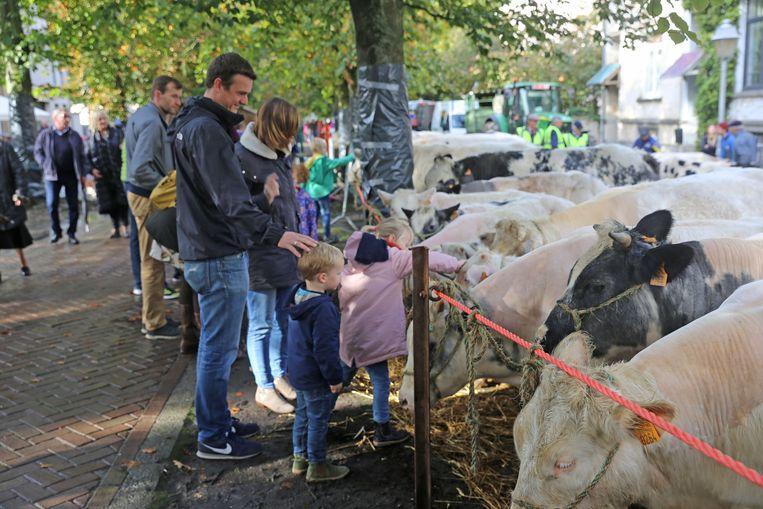 Veel gezinnen kwamen een kijkje nemen naar de dieren op de jaarmarkt.