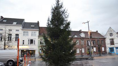 Veel Ninovieters zaten er al op te wachten: drie grote kerstbomen geplaatst in stadscentrum