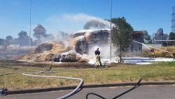 VIDEO. Hooiwagen vat vuur ter hoogte van tankstation