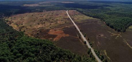Twee keer per jaar vinden boswachters lichaamsdelen op Veluwe