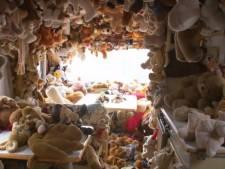 Pet uit Utrecht heeft twintig caravans tjokvol met zijn verzamelingen