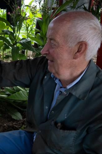 """Boer Jean (67) die in de cel zat, blikt terug: """"Ja, ik heb bucht gekweekt in de maïs. Gelukkig had de rechter gezond verstand"""""""