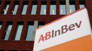 """24-urenstaking bij AB InBev: """"We willen dat directie problemen niet langer minimaliseert"""""""