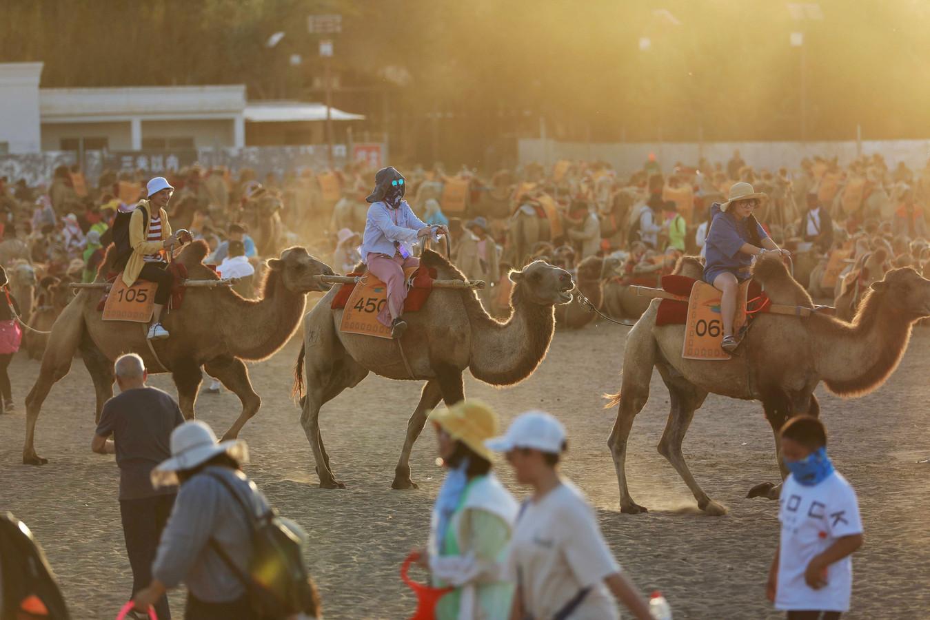 Toeristen op hun kamelen.