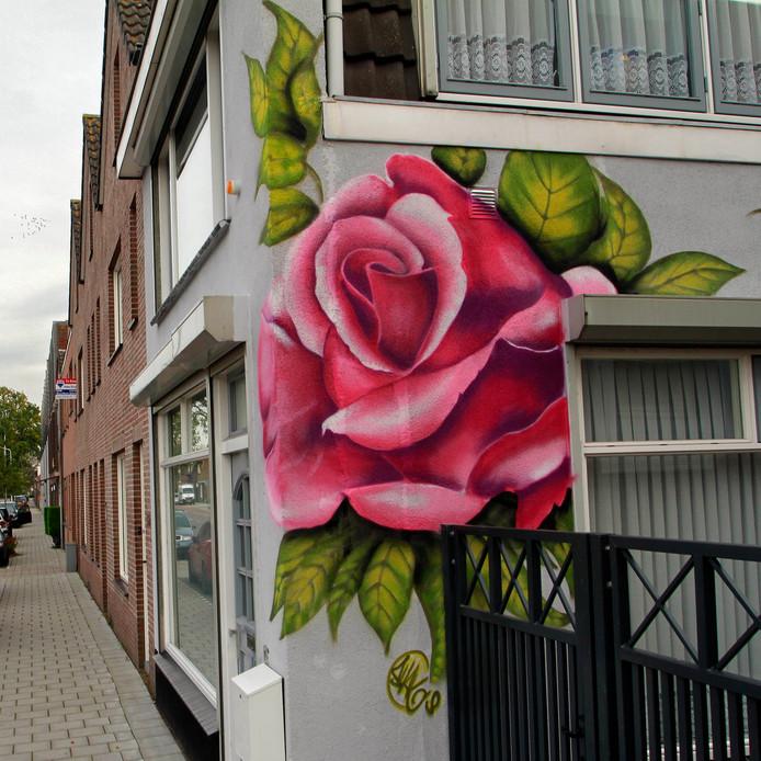 Muurschildering  woning Bredaseweg 130 foto: pix4profs/gerard van offeren
