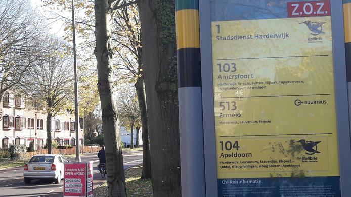 Als stadsdienst blijft alleen lijn 1 blijft over. Die rijdt straks eens in het half uur door Harderwijk.  Lijn 103 (Nunspeet-Amersfoort) vervalt en wordt opgedeeld in een lijn 111 (Nunspeet-Harderwijk) en 101 (Harderwijk-Amersfoort).