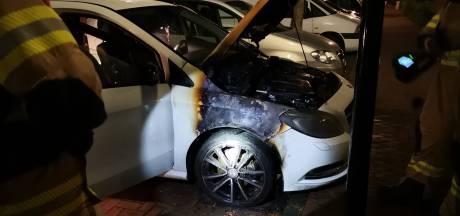 Buren blussen autobrand met tuinslang in Ede