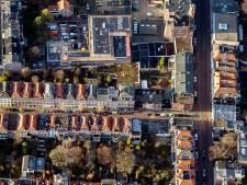 Mooiste dakterras van de stad: 'Geluidsdicht door plantjes'