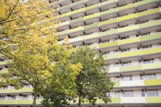 De flat Moerwijkzicht in wijk Hoge Vucht is verduurzaamd en van het gas af.