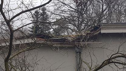 """Feestzaal Strijboshof zwaar getroffen door storm. """"Maar geplande activiteiten kunnen doorgaan deze week"""""""