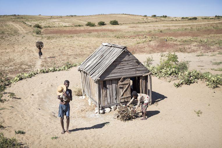 In het dorp Ambovombe in het zuiden van Madagaskar probeert een gezin te overleven in een verdroogd landschap Beeld Sven Torfinn / de Volkskrant