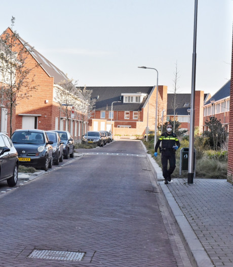 Verdachte verwondt zichzelf onderweg naar bureau nadat man in huis is neergestoken in Tilburg