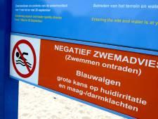 Blauwalg in waterplas Steenvliet
