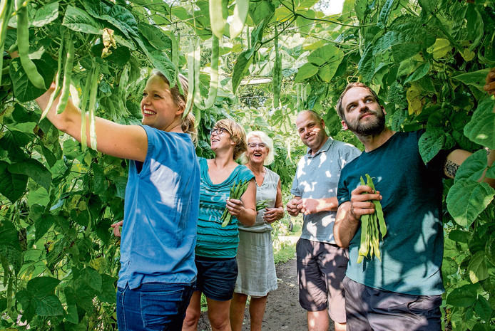 De familie Franken uit Bergen op Zoom schrijft om beurten over het wel en wee van hun fruitteeltbedrijf.