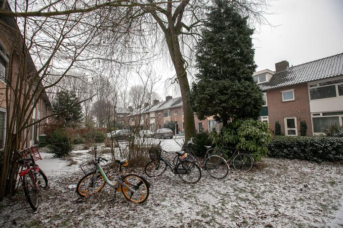 Eindhoven Het Adonispad is een van de straten waar de discussie over kamerverhuur speelt