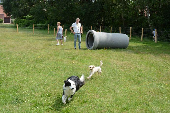 Op het afgebakend terrein kunnen honden vrij rondlopen en ravotten.