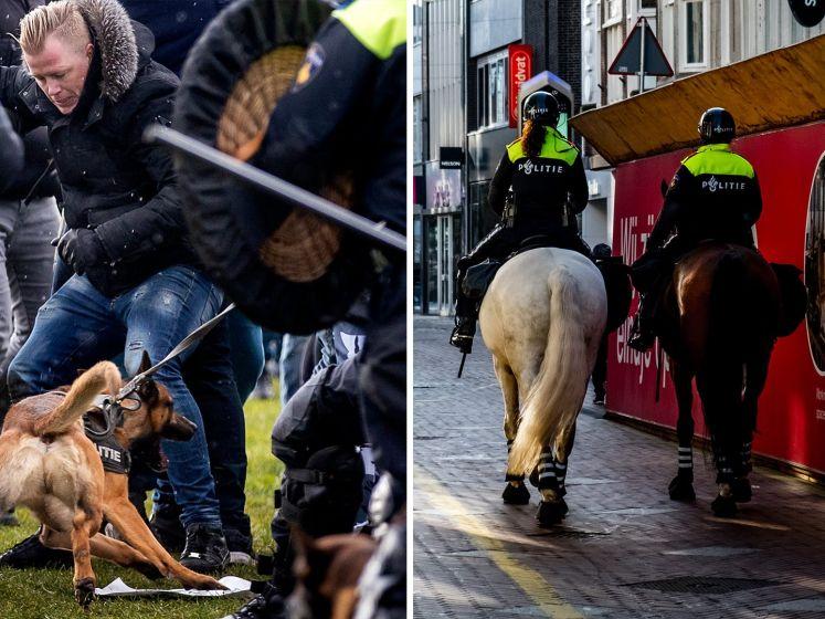 Dierenbelangenorganisatie: 'Stop met inzetten van honden en paarden bij rellen'