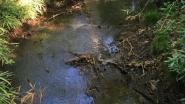 Water pompen uit tien stroomgebieden in provincie Antwerpen tijdelijk verboden wegens kritisch laag waterpeil