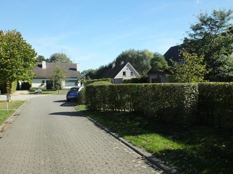 Voor de huizen in de straat Gaver nam het gemeentebestuur jaren geleden zelf de regie in handen.