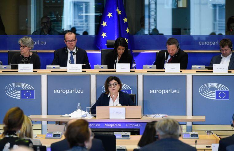 Adina Valean spreekt voor het Europees Parlement in Brussel.  Beeld AFP