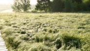 Natuurpunt Herzele gaat wandelen in Everbeekse bossen