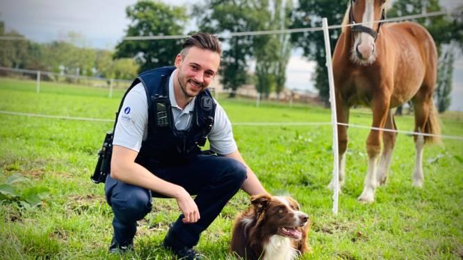 """Inspecteur bij CARMA voltijds met dierenwelzijn bezig: """"Zolang dieren niet voor zichzelf kunnen spreken, doe ik dat voor hen"""""""