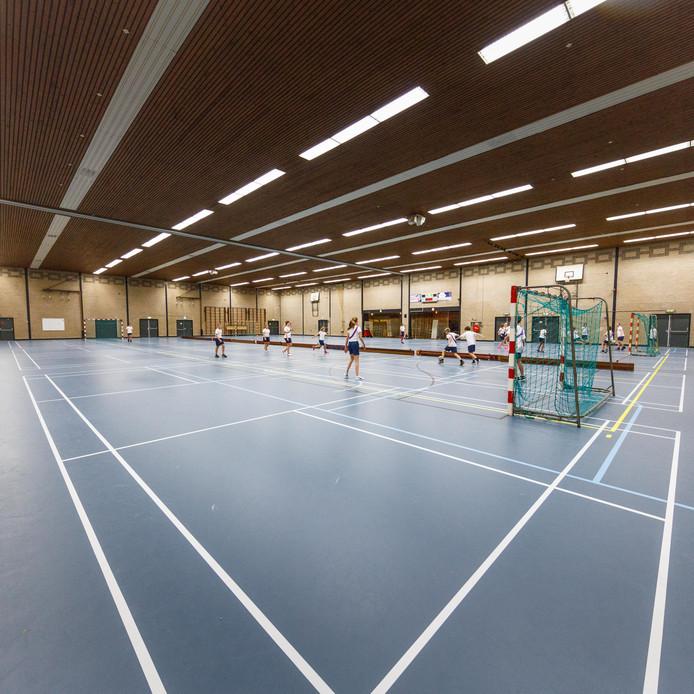 De vloer is nieuw, maar in andere opzichten kan sporthal De Borgh in Zevenbergen ook een renovatie gebruiken.