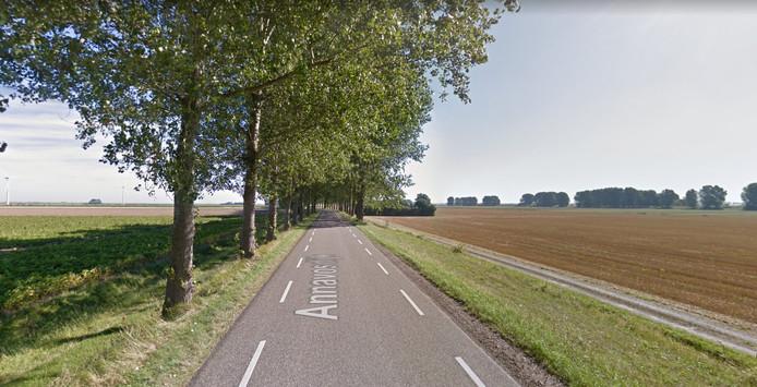De Annavosdijk in Sint-Annaland.