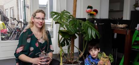 Planten krijgen tweede leven bij plantenasiel Een Nieuwe Stek in Fijnaart