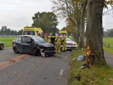 Vrouw en kinderen crashen tegen boom in Emst