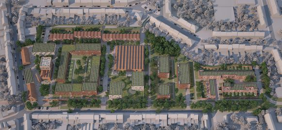 De nieuwe woonwijk op de site van de verlaten Saffre Frères-fabriek aan de Dijkstraat in Oudenaarde krijgt het allereerste tTiny forest' van Vlaanderen.  Straks ook in Roeselare?