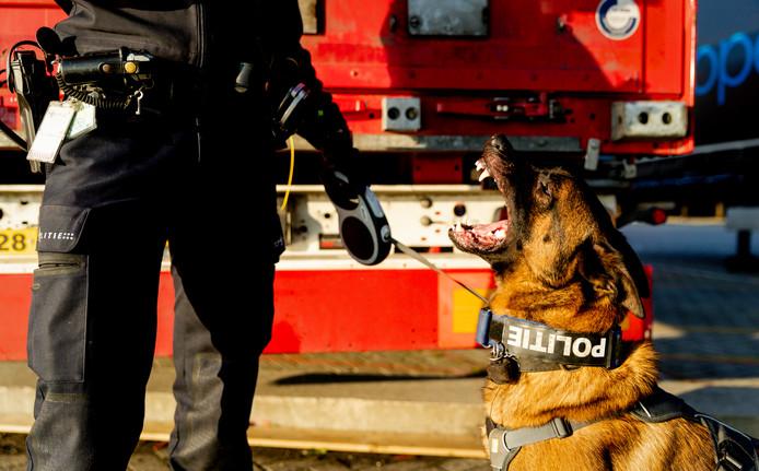 De politie gebruikt honden om de vrachtwagens te controleren op inklimmers.