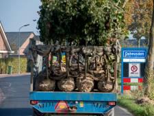 Brexit schudt ook aan laanbomen in Neder-Betuwe