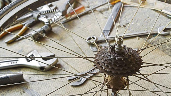 'Stofzuigen, bedenken of de opschietende scheuten in mijn nieuwe groentetuintje nou onkruid of zaaigoed zijn, fiets repareren...' Foto ter illustratie.