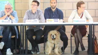 Sammy Mahdi (CD&V) het populairst tijdens schooldebat… Maar hond Pamuk gaat nadien met alle aandacht lopen