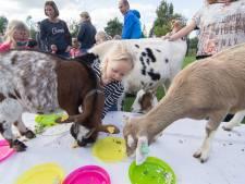 Kinderboerderij in Houten was net uit de schulden en toen kwam corona: 'Dit is echt zuur'