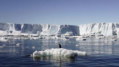 """De """"veiligste plek op aarde"""": 5.000 onderzoekers zitten nog op coronavrij Antarctica"""