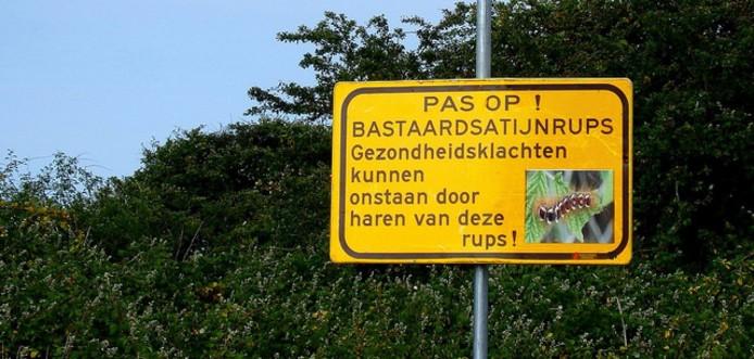 Bord waarschuwing Bastaardsatijnrups