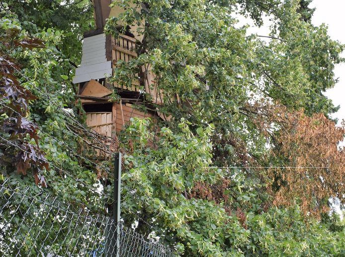 De boomhut in Schoonrewoerd groeide met de dag, maar bleek volgens gemeente Vijfheerenlanden te onveilig.