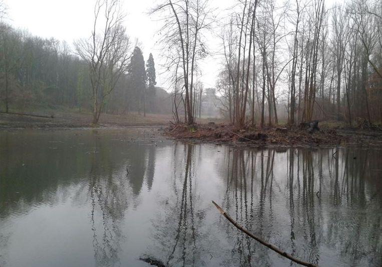 Door natuurbeheer kwam er weer water in de vijver van het kasteelpark